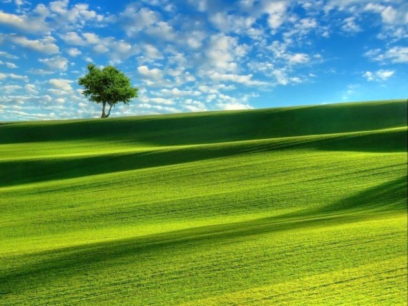 Il PIL italiano in calo del 10% al 2050 a causa del Clima